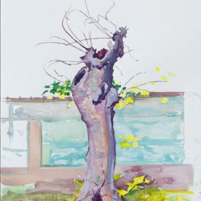 Melanie Vote: Latarra Tree (2014) watercolor on paper 9x12 in.