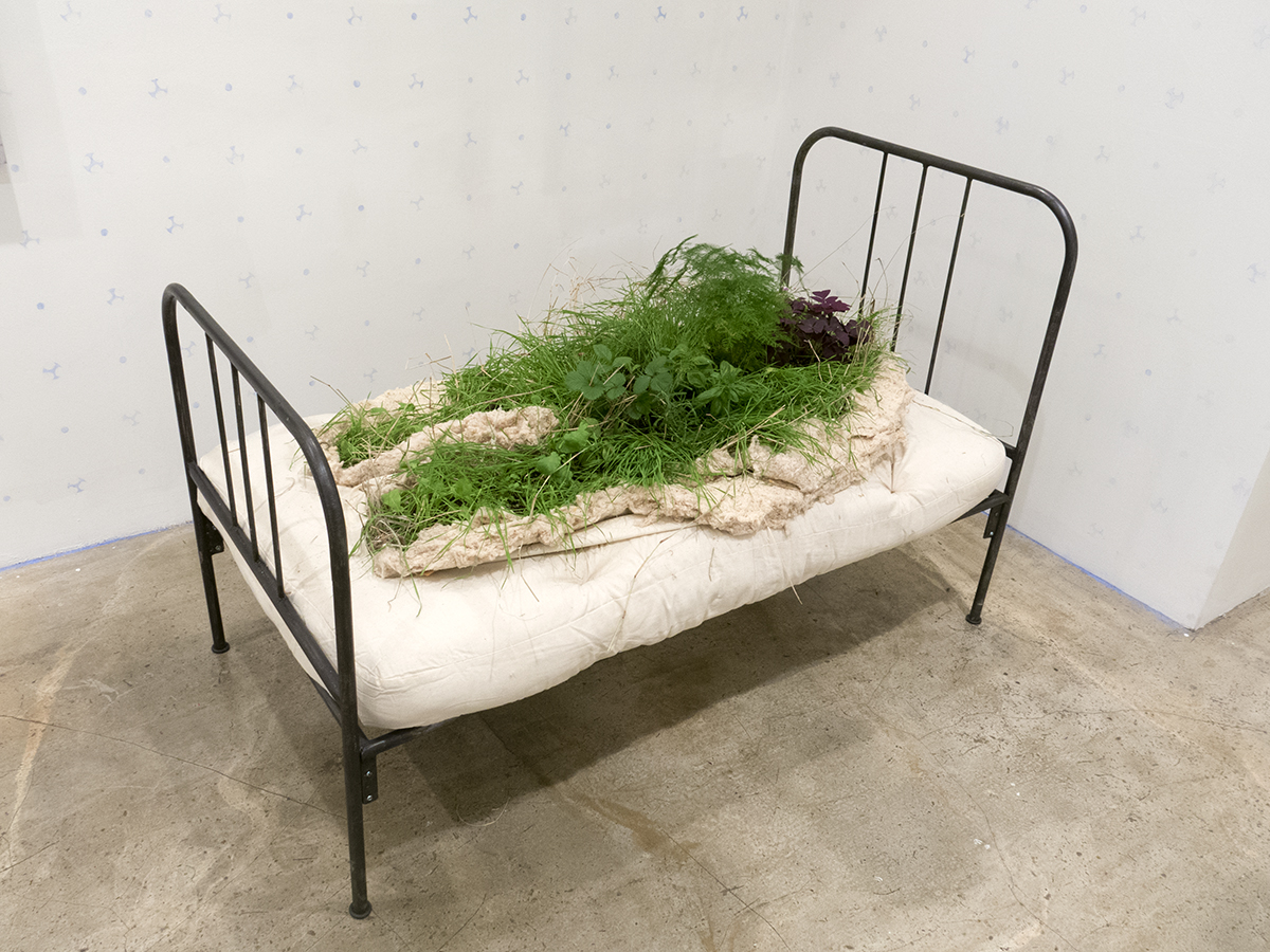 Melanie Vote sculpture part of show Overgrowth at Hionas Gallery New York City Growning Bed (2016) metal cotton and live plants 60 x 33 x 42 inch