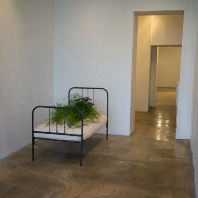 Installation Installation View #1 of Overgrowth at Hionas Gallery